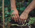 Havearbejdet kalder: Sådan gør du dig klar
