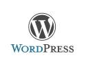 Optimér din WordPress-side med plugins