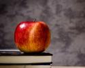 3 ting der er uundværlige i skolen