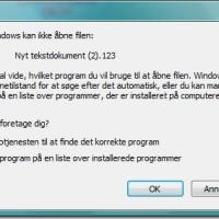 Hvordans sætter man et program til altid at åbne en bestemt slags fil typer ?