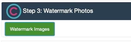 """Vælg nu """"Watermark Images"""""""